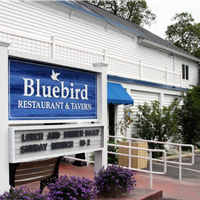 Bluebird of Leland Inc.