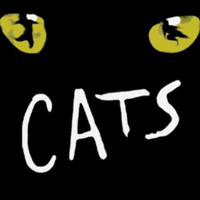 CATS - Оригиналният мюзикъл
